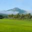 """Phú Yên đâu chỉ """"hoa vàng với cỏ xanh"""""""