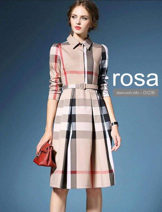 DX238 ROSA 2