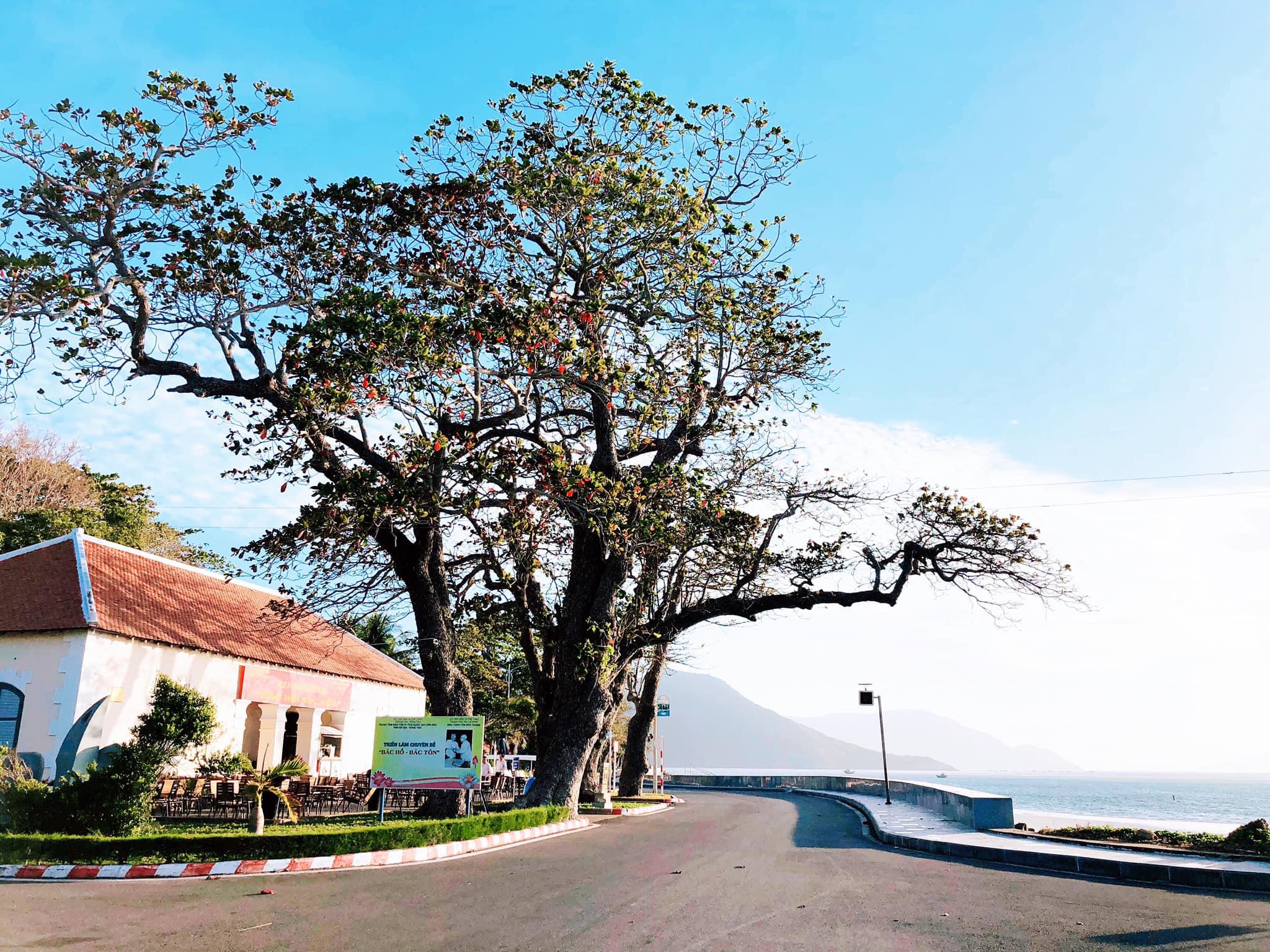 Du lịch tham quan Côn Đảo