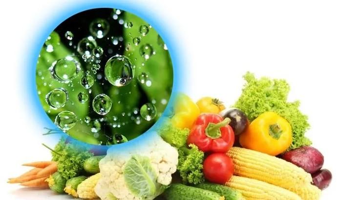 Hướng dẫn cách bảo quản Rau củ quả